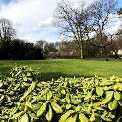 Tille Motorgeräte – Garten-, Forst- und Kommunaltechnik